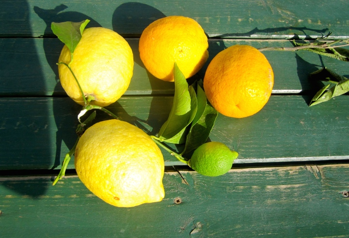 het-geel-van-de-citroenen-2