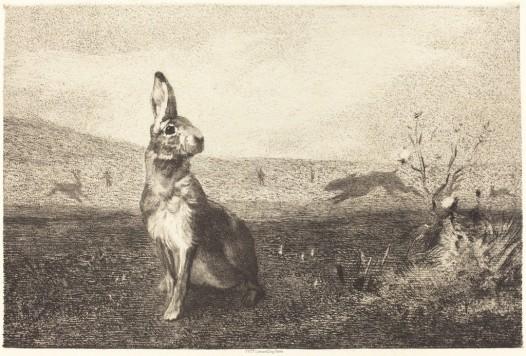 felix-bracquemond-after-albert-de-balleroy-the-hare-ca-1860