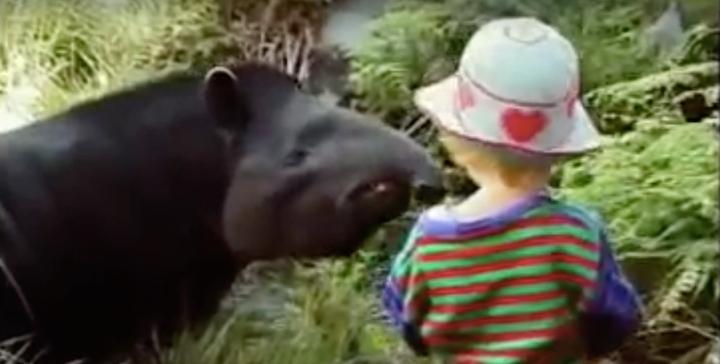 Shaman and the tapir in the Amazone 20.20.06.jpg